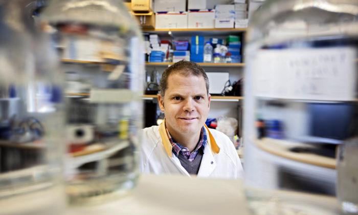 Torsten Söderbergs akademiprofessur i medicin 2016 till bakterieforskare