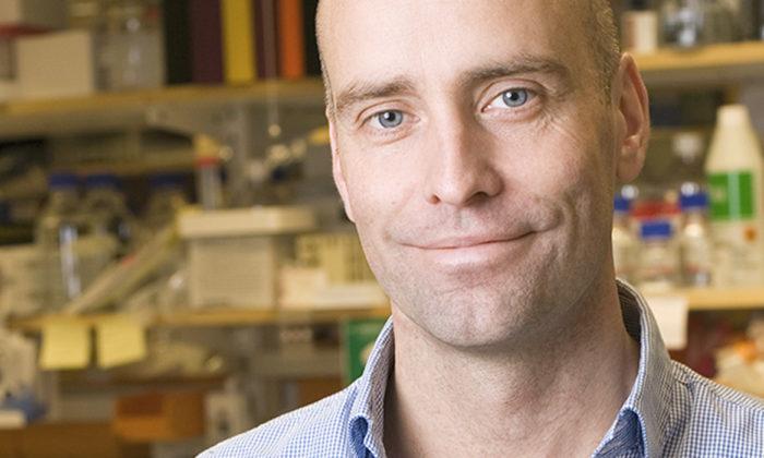 Jonas Frisén får Torsten Söderbergs akademiprofessur i medicin 2013